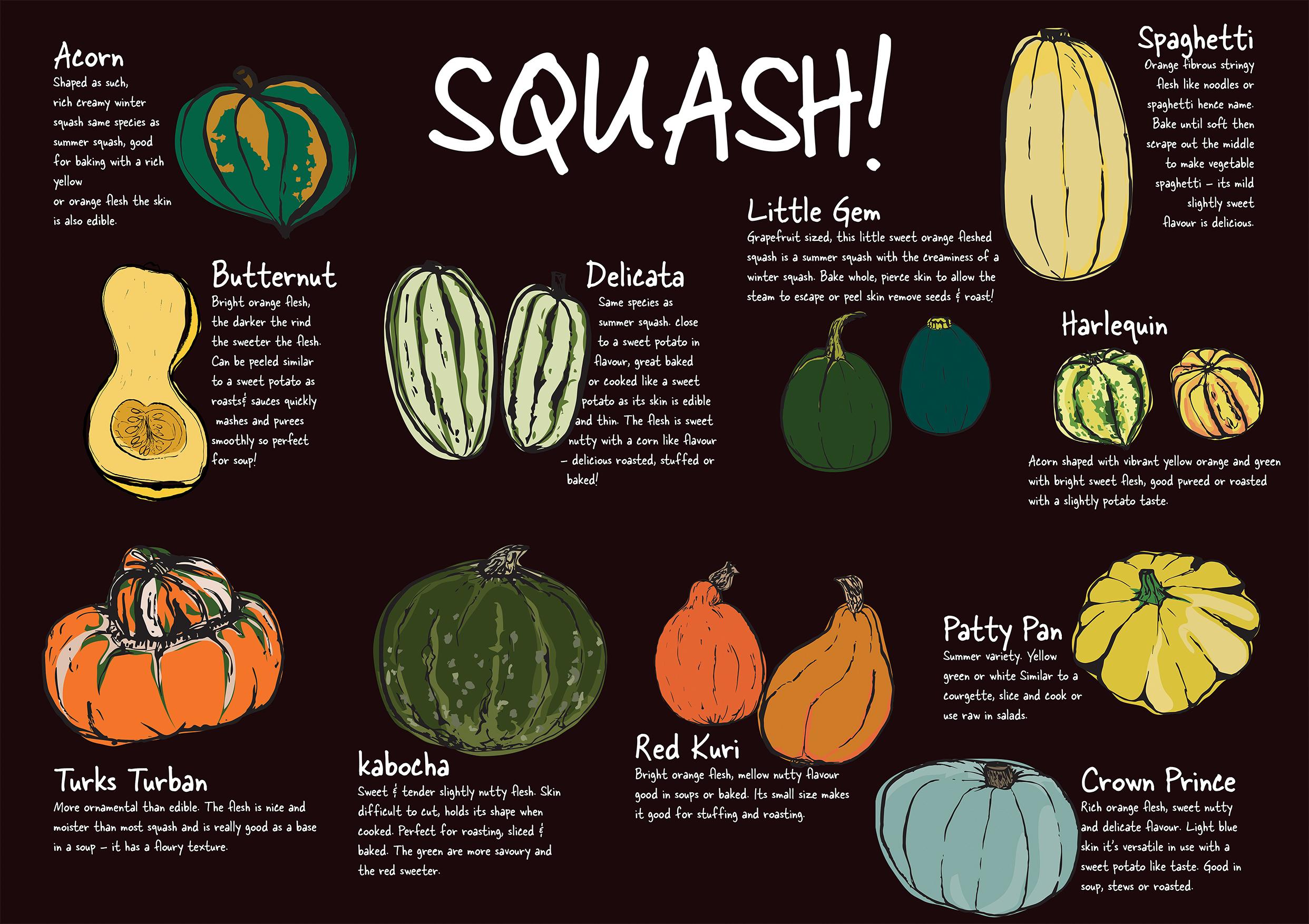 Squash-Poster